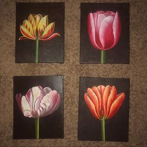 Painted Tulip canvases